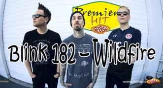 Premiera Hit Blink 182 – Wildfire