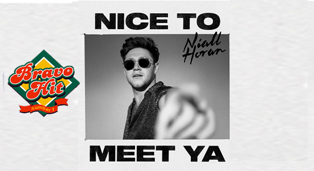 Niall Horan – Nice To Meet Ya (Браво Хит)